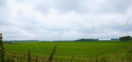 Windpark Westerse polder